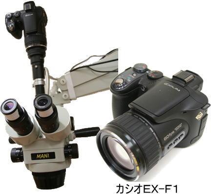 exf1.jpg